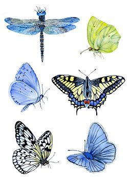 Schmetterlinge botanisch von Geertje Burgers