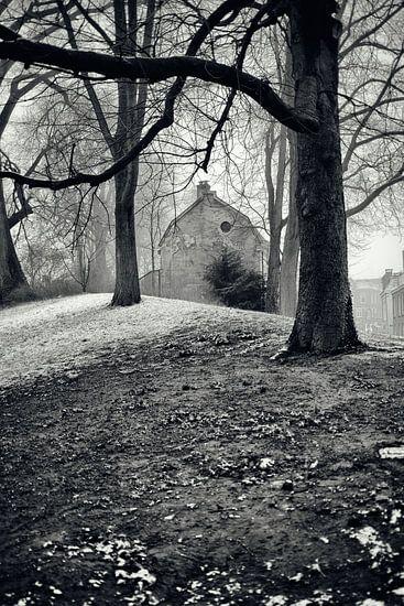 Straatfotografie in Utrecht.  In het park Manenburg met zicht op de Wijde Doelen in Utrecht.(Utrecht