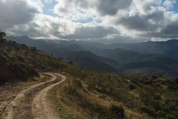 Eine Straße ins Nirgendwo von Charlotte Serrarens