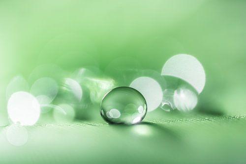 Rustgevende macro van een waterdruppel in groene tint van