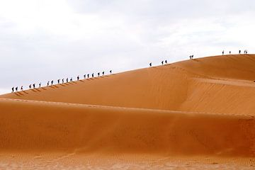 Massa toerisme Deadvlei Namibie van Leo van Maanen