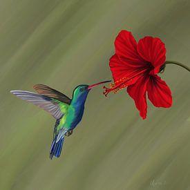 Kolibrie bij rode hibiscusbloem van Marion Moerland