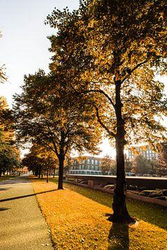 Herfst in Breda - Autumn in Breda van Erik Rietkerken