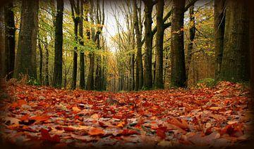herfstkleed von Hanneke de Vries-Koning