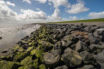 Waddendijk van Terschelling van Tonko Oosterink