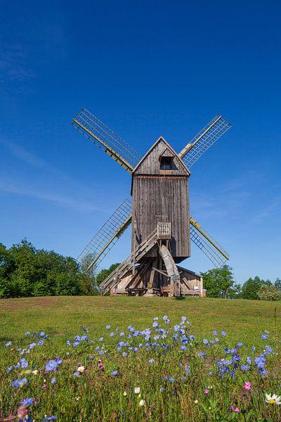 Bockwindmühle, Wehe, Rhaden, Ostwestfalen-Lippe, Nordrhein-Westfalen, Deutschland, Europa von Torsten Krüger