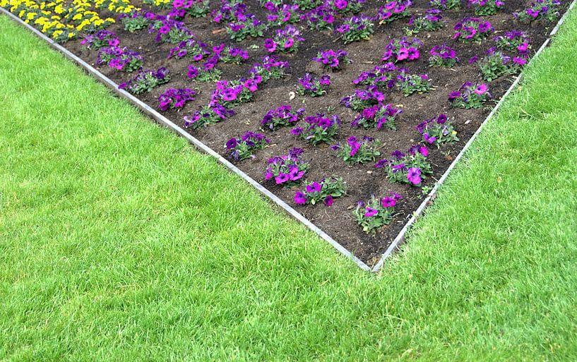 Bloemen sturen van Sigrid Klop