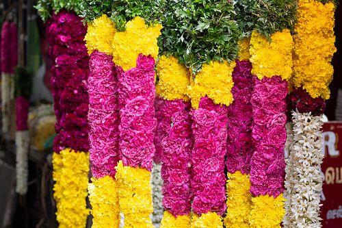 Bloemenslingers op markt in Pondicherry, India van