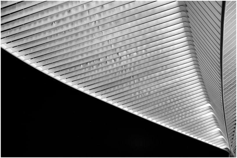 Dak in zwart wit von Wim Mourits