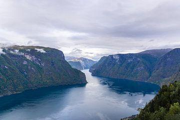 Aurland fjord op een bewolkte dag van Mickéle Godderis
