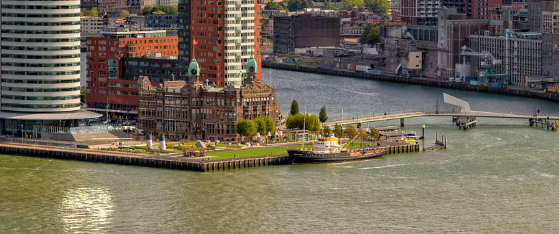 Kop van Zuid Rotterdam #2 van Roel Ovinge