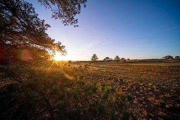 Sonnenuntergang über der Veluwe, Beekhuizerzand von John Ozguc