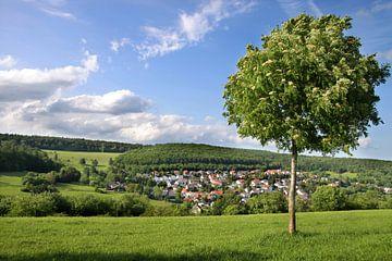 Das Dorf Engenhahn im Taunus van Christian Müringer