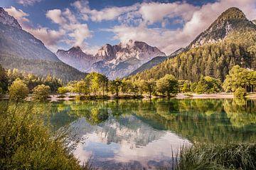 See bei Kranshka Gora, Slowenien von Claudia van Vulpen Lenssen