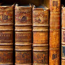 Antiquariaat - oude boeken in bruintinten van Marianne Ottemann - OTTI