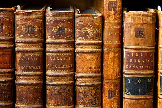 Antiquariaat - oude boeken in bruintinten