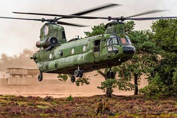 Chinook-Hubschrauber in der Heide von Oirschotse von Aron van Oort