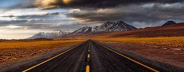 Gelbe Straße, Adhemar Duro von 1x
