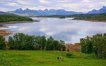 Abendstimmung am Tysfjord von Gisela Scheffbuch