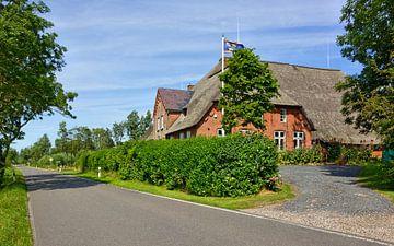 Landelijke Noord-Friese idylle van Gisela Scheffbuch