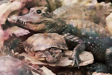 Krokodil en schildpad van Pim Klabbers