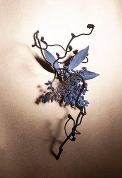 Die neunundneunzigste Sammlung von Lise-Marie Schwander