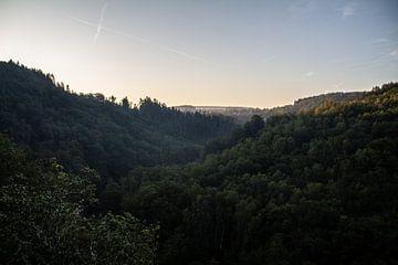 Mit Blick auf den Wald von Adinda Heeres