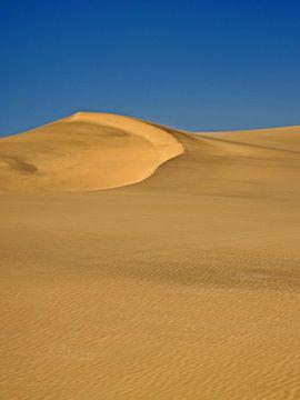 Namib woestijn nabij Swakopmund in Namibië 2 sur Jan van Reij