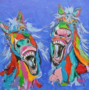 Vrolijk lachende paarden van