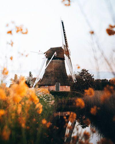 Noordermolen, Groningen