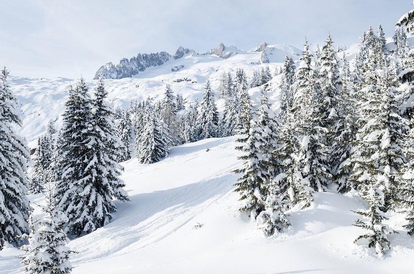 Winter in Zwitserland (Bettmeralp) van Johan van Veelen