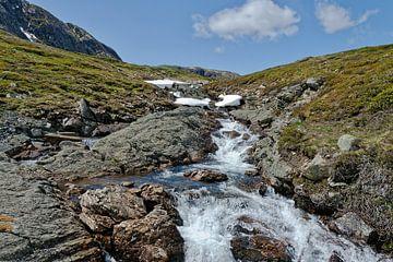 Norwegen, Norway, Valdresfye von Michael Schreier