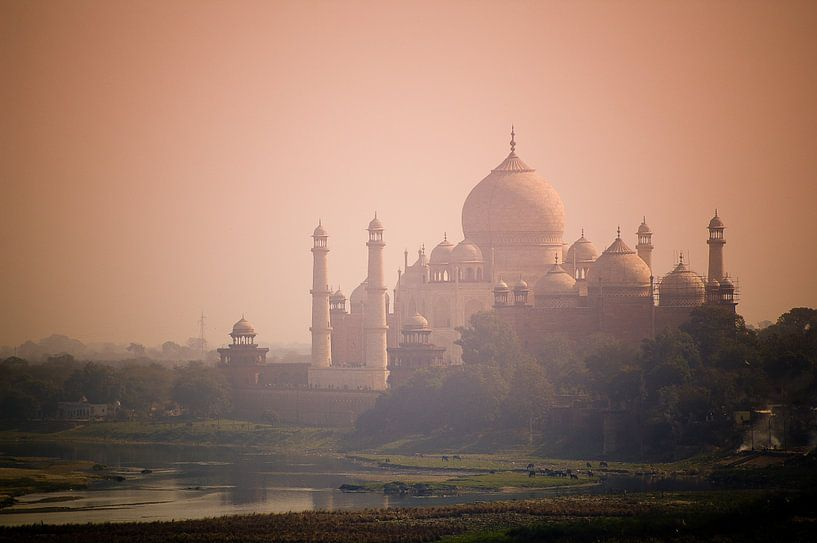 Taj Mahal - Morning Light van Nico van der Vorm