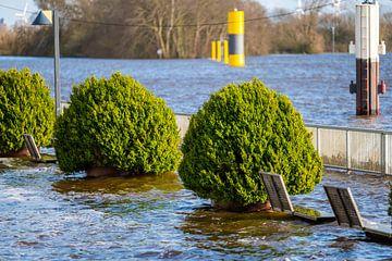 In Bremen ist die Promenade wieder mit herrlichem Wetter überflutet von Matthias Korn