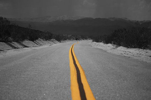 Desert Highway van