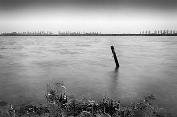 Rivier De Rijn van Mark Bolijn