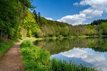 Holzmaar (Eifel), Allemagne sur shot.by alexander