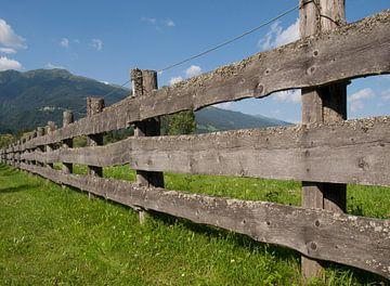 Hek in weiland, Dellach im Drautal, Oostenrijk von Rinke Velds