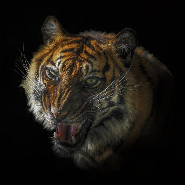 De grom van de tijger van Karin aan de muur
