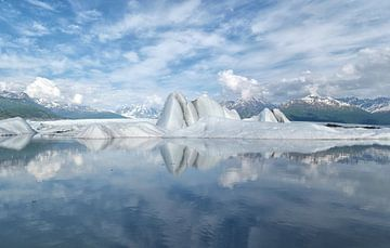 Alaska, Knik Glacier, Icebergs  van