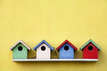 Straße der Vogelhäuser von Peter de Kievith Fotografie