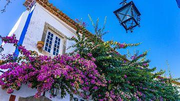 Niedliche kleine Straße in Óbidos, Portugal von Jessica Lokker