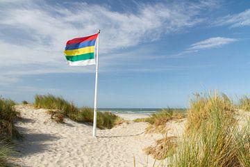 Strand en duinen van Terschelling met vlag #2 van Marianne Jonkman