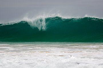 Tsunami von Peter van Dam