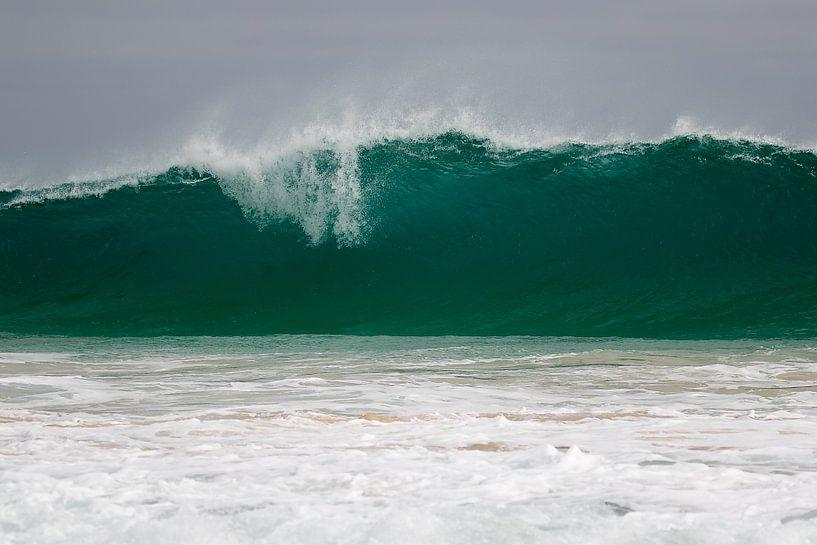 Tsunami van Peter van Dam