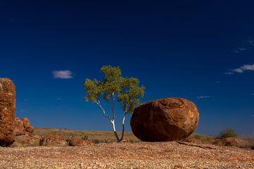 Devils Marbles: tree and stone  von