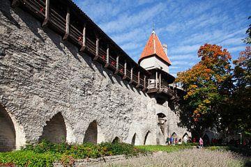Meisjestoren, Stadsmuurtoren, Museum, Tallinn, Estland, Europa