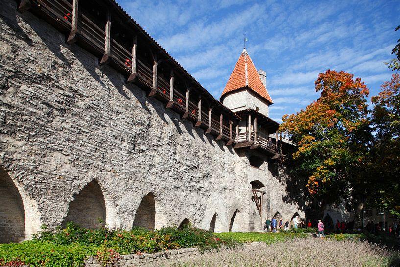 Mägdeturm, Turm  der Stadtmauer, Museum, Tallinn, Estland, Europa von Torsten Krüger