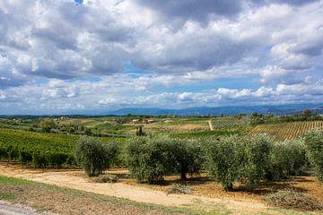 Typisch Toscane van Tess Groote