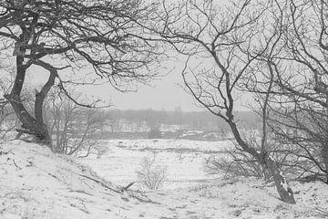 Landschap in de sneeuw van Ans Bastiaanssen